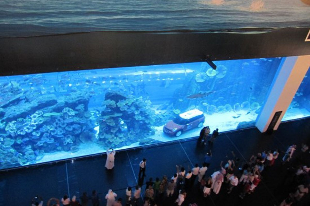 MINI R60 in a aquarium, Korea